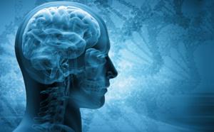 Les 4 principes en sophrologie